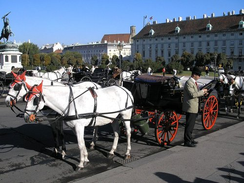 Fiaker, hästdroska i Wien. foto Gryffindor