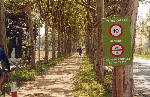 cykelvägen ruta del Carrilet, kantad av plataner.Castell d'Aro