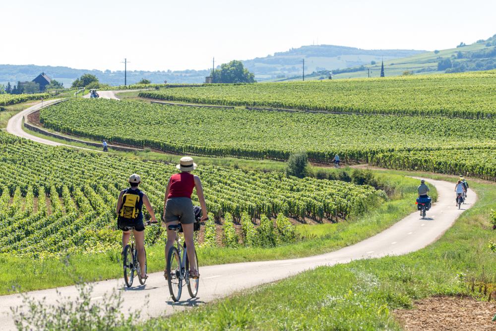 vignobles @Alain DOIRE Bourgogne-Franche-Comté Tourisme