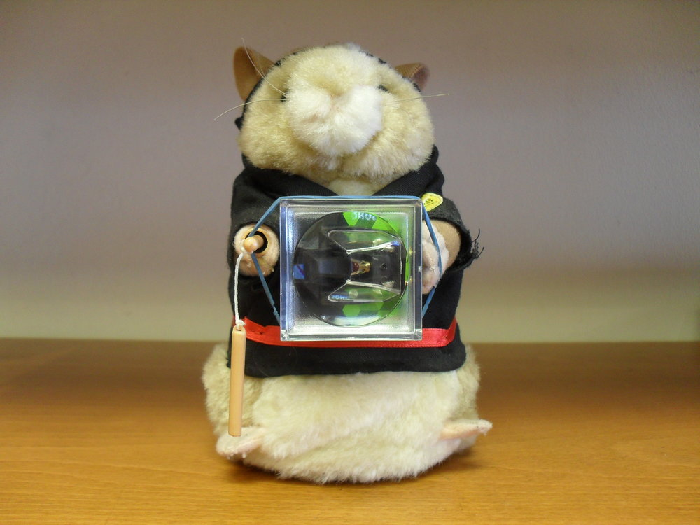 Almost forgot Kung Foo Hamster