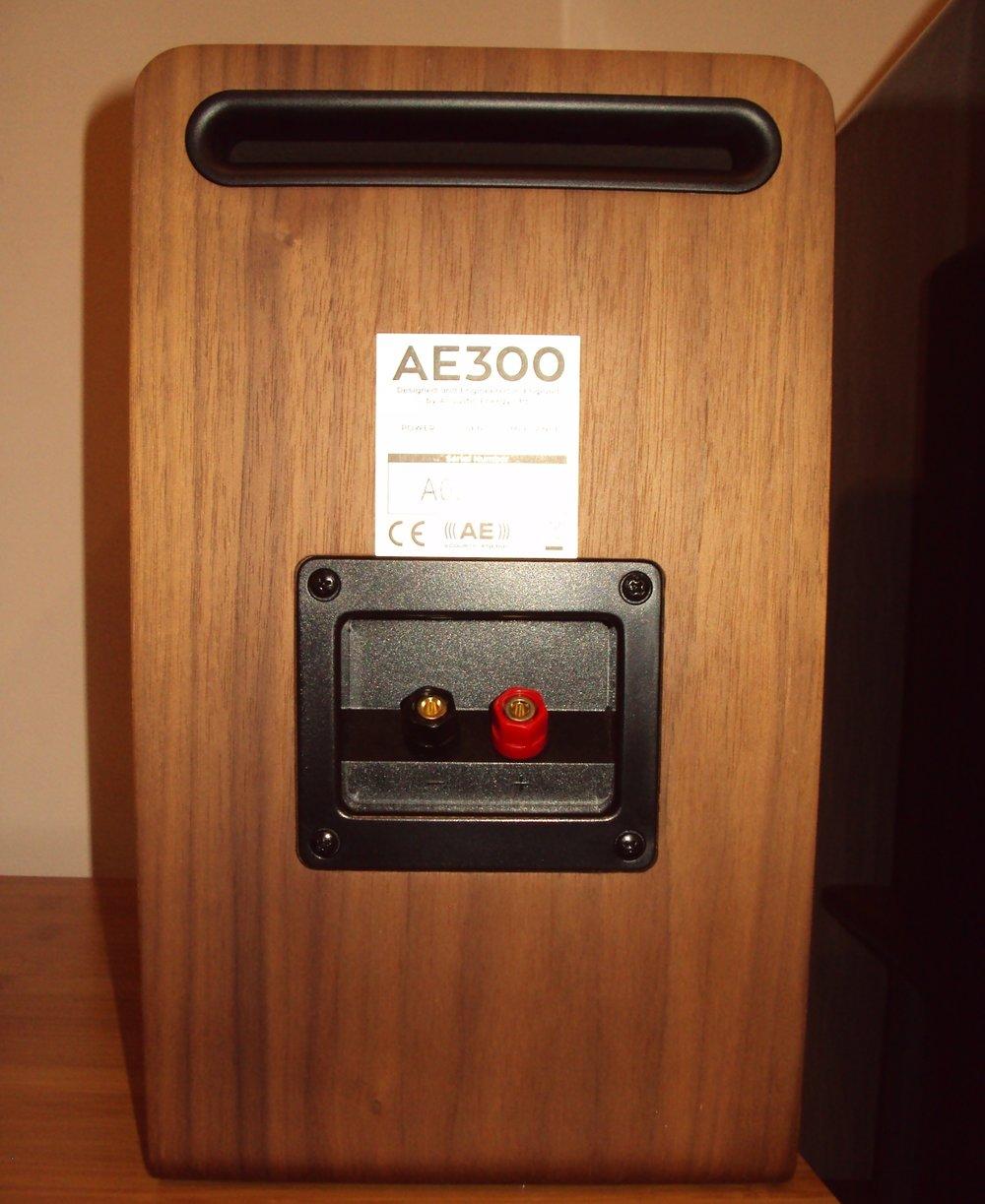 AE300 Rear.JPG