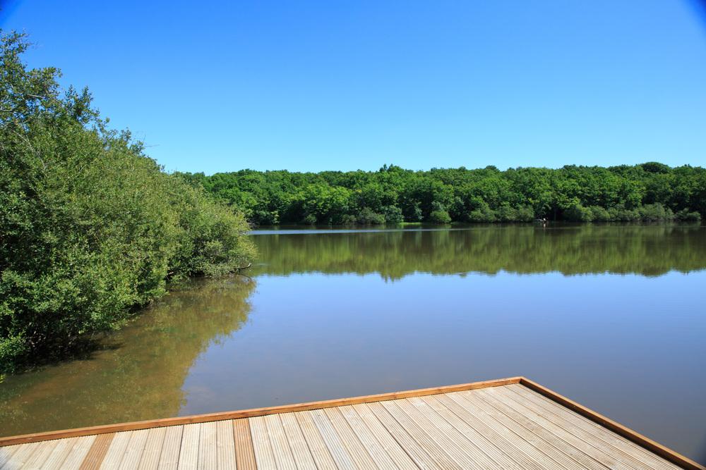 Lake-Meillant-2013_179.jpg