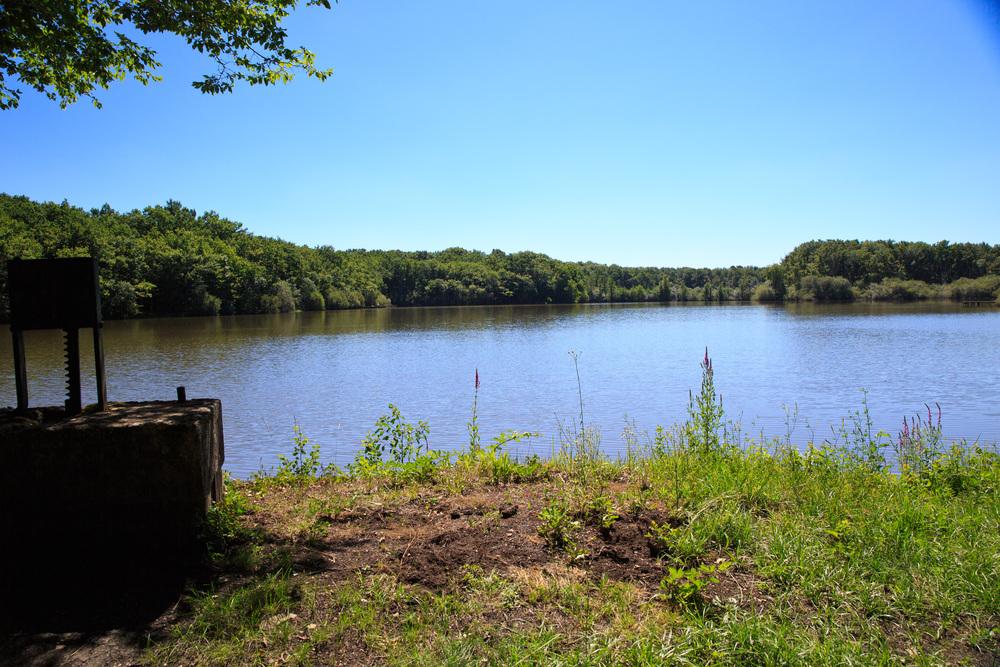 Lake-Meillant-2013_162.jpg