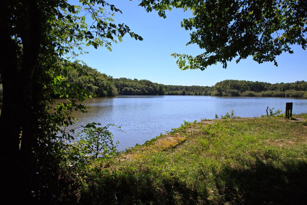 Lake-Meillant-2013_156.jpg