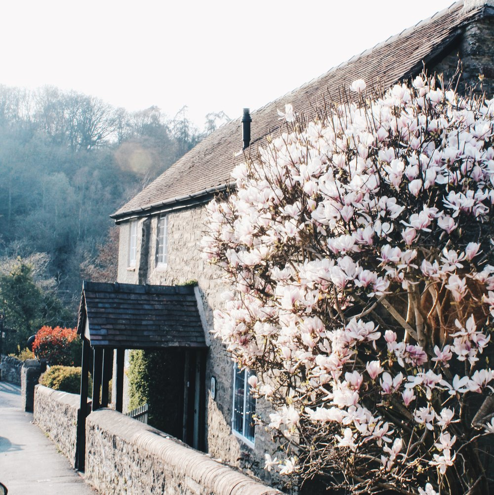 One of the quaint cottages that are on the way down to the river. It would be such a lovely place to live.