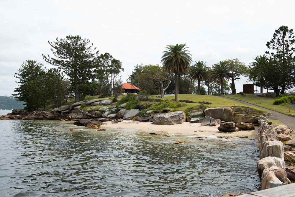 Shark Island | Sydney Harbour