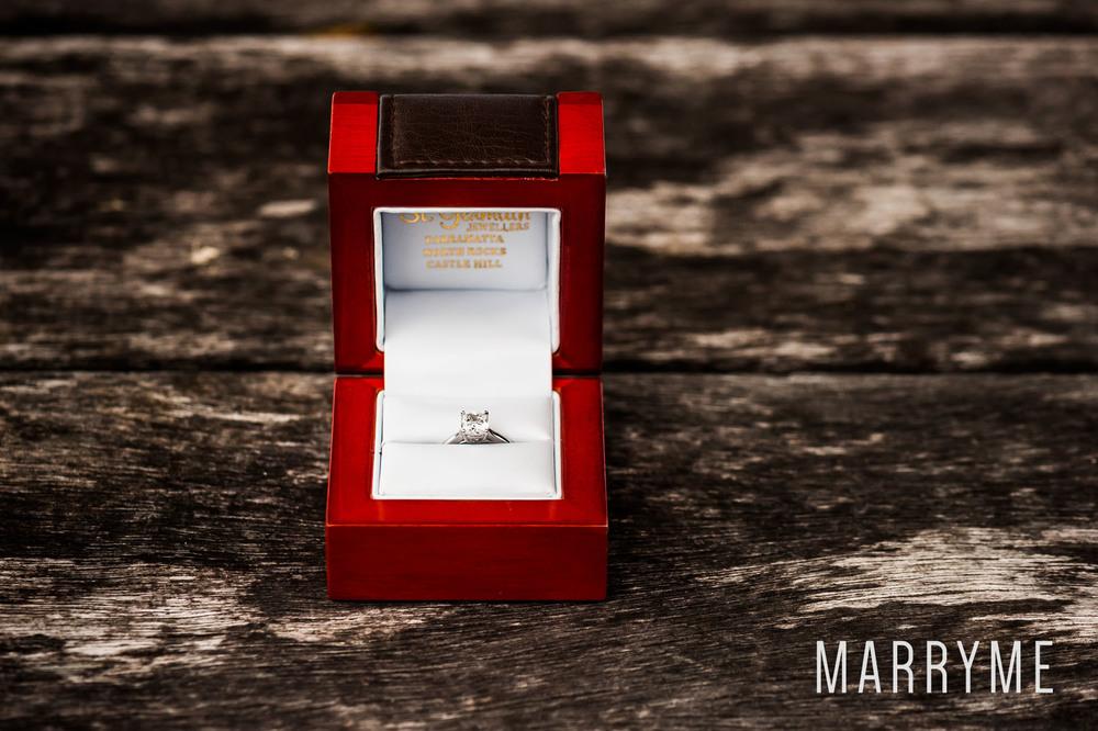 Sydney Harbour Shark Island marriage proposal 1