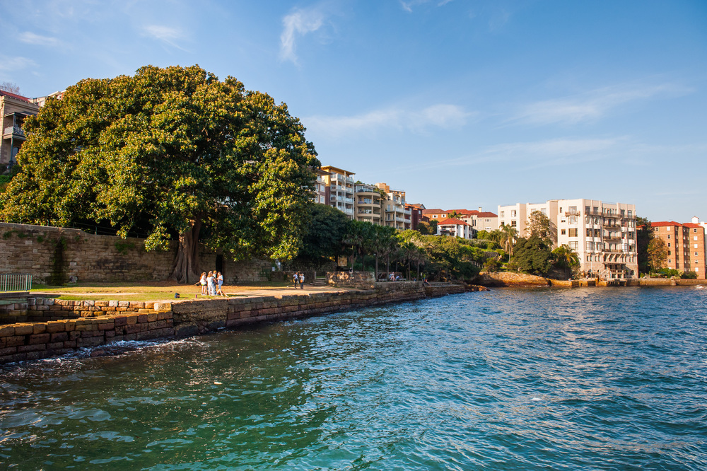 Jeffrey Street Wharf | Kirribilli | View from wharf