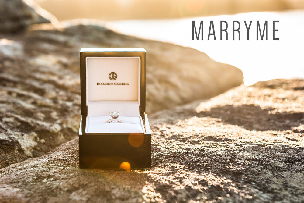 1_Mrs_Macquaries_chair_marriage_proposal_sydney_marryme