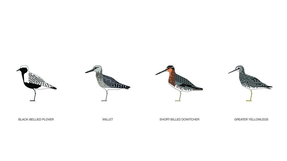 migrations_illustrations_dylan_noble_1.jpg