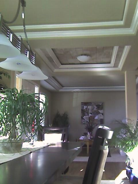 Entry ceiling from didning.jpg