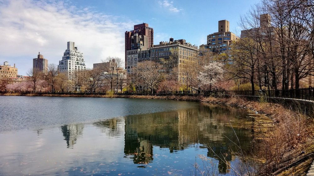 A reservoir in Central Park, New York City.