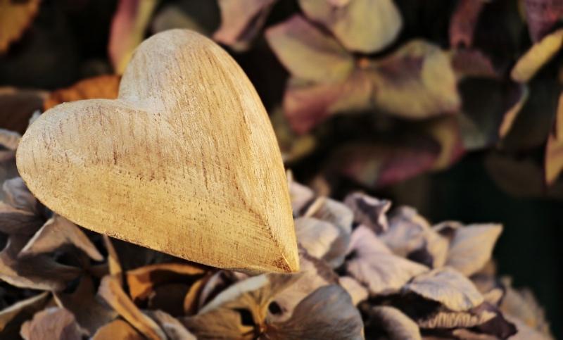 heart-2945403_1280.jpg