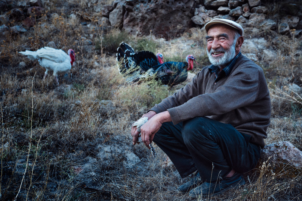 Turkey herder in Soganli valley