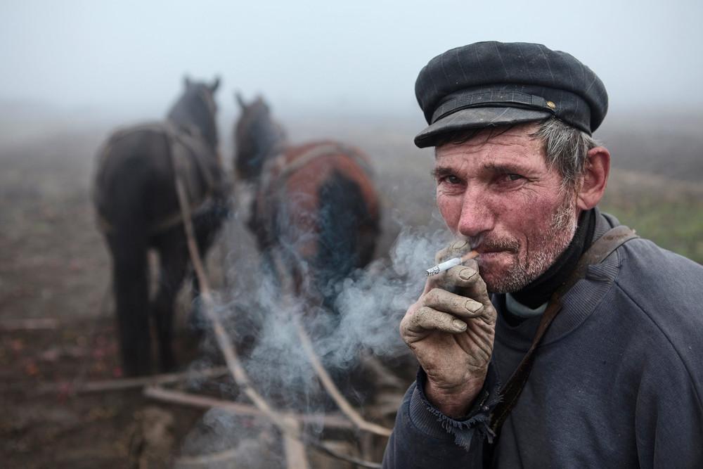 Romanian farmer in the fog