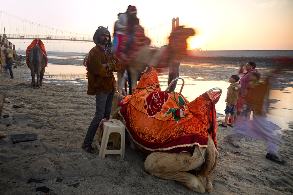 Rabari man with camels in Dwarka