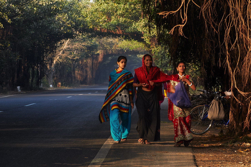 Women walking through tunnels of banyan trees along a road