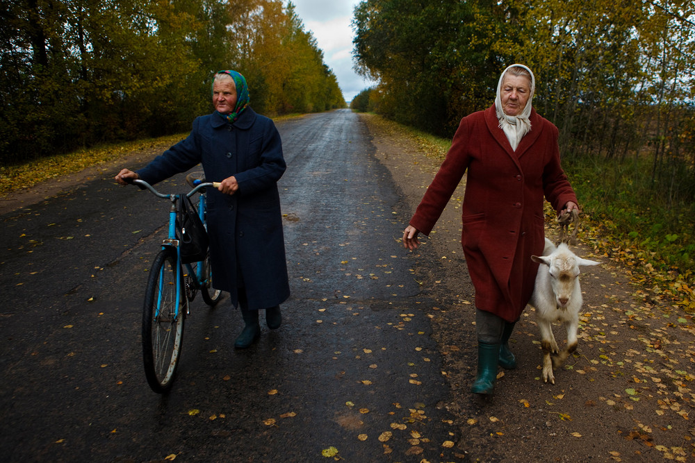 Elderly women talking with their goats along a road in Belarus