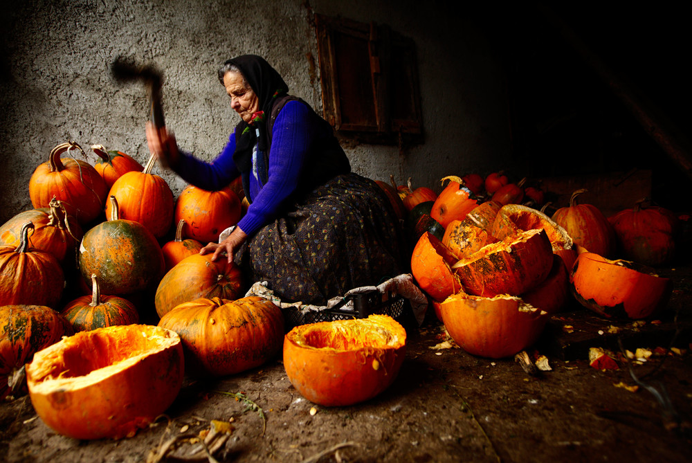 Romanian woman chopping pumpkins in her shed