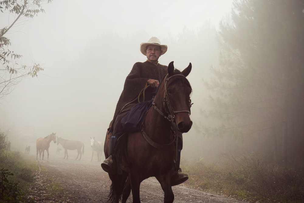Colombia-travel-zona-cafetera-man-on-horse-in-fog