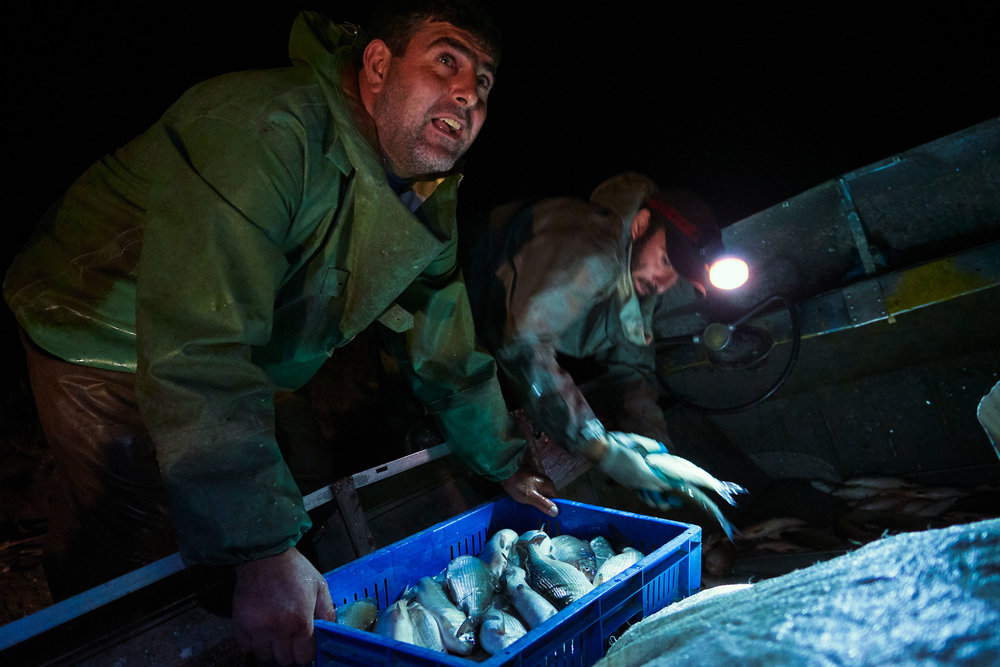 Armenia-Lake-Sevan-fishermen-with-fish