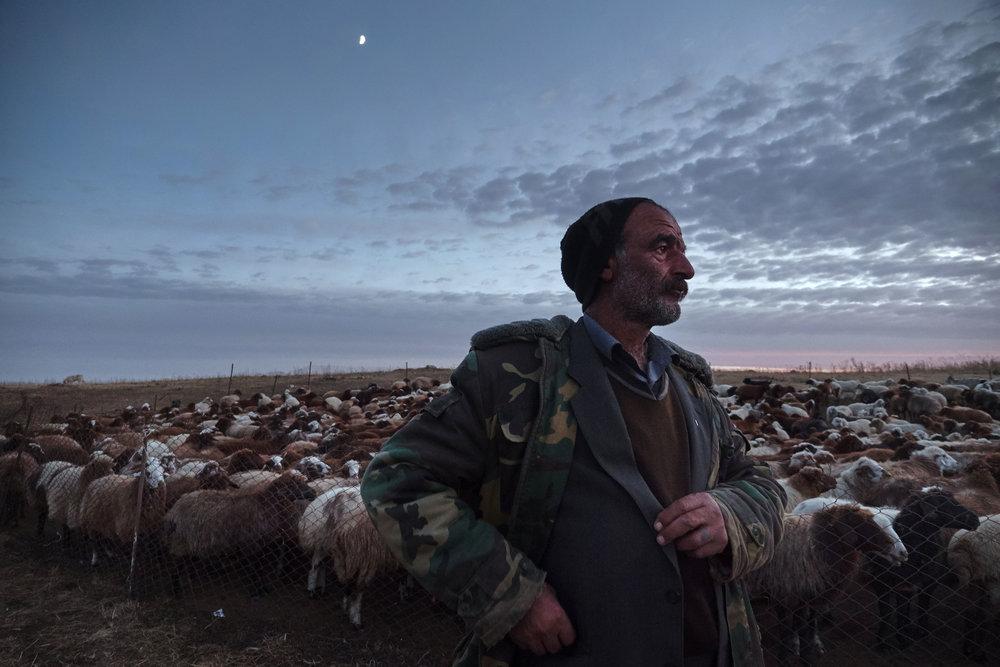 Yezidi shepherd Zakar