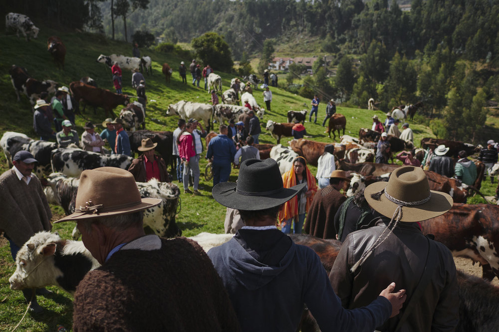People at animal market Monui Boyaca