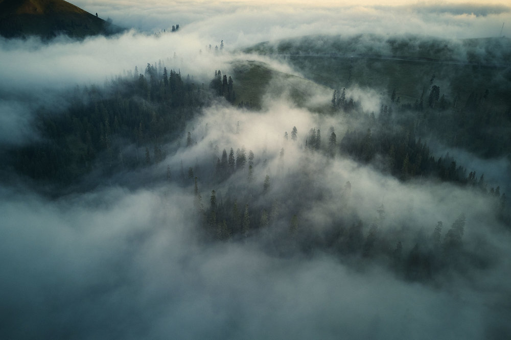 Georgia-Bakhmaro-clouds-over-forest.jpeg