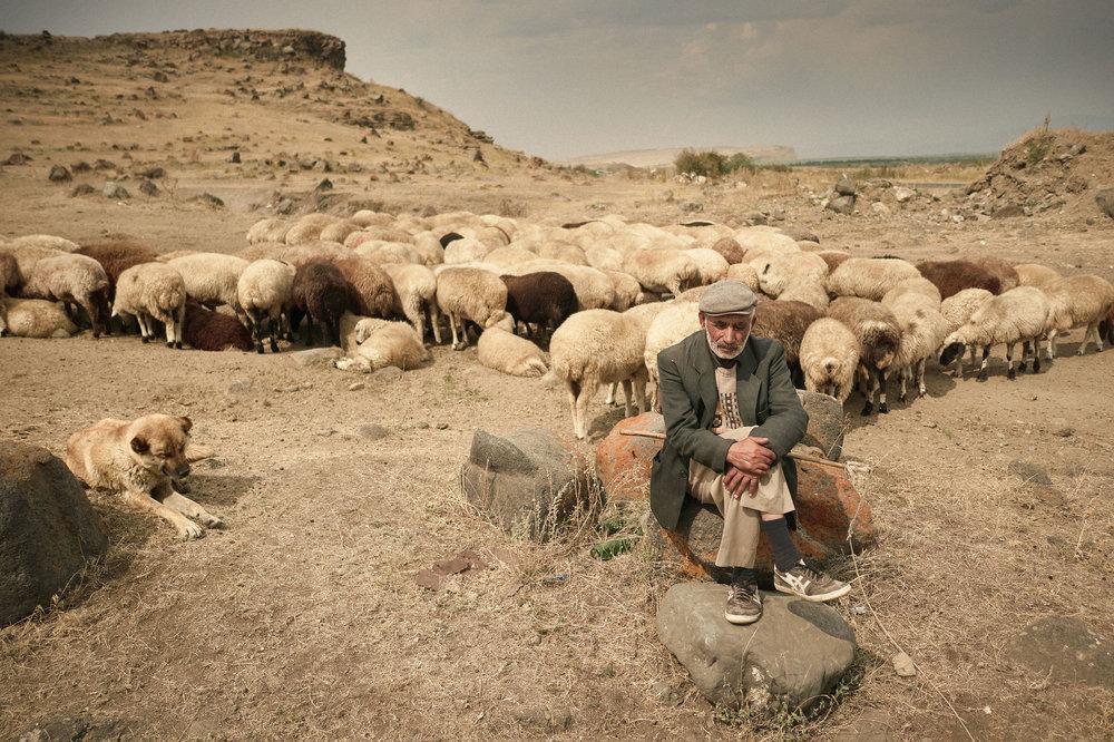 Armenia-Lake-Sevan-Shepherd-with-sheep.jpeg
