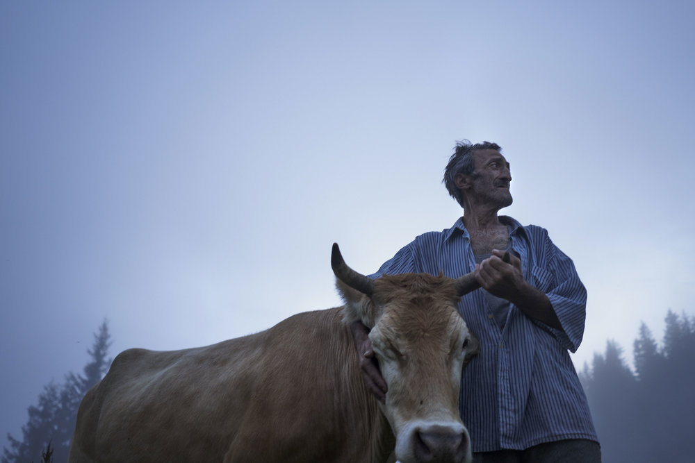 Shepherd with his cow in mountaineous Adjaria.JPG
