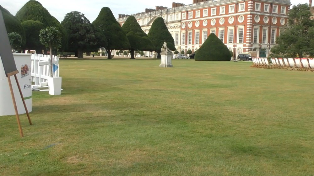 On the lawn overlooking the palace