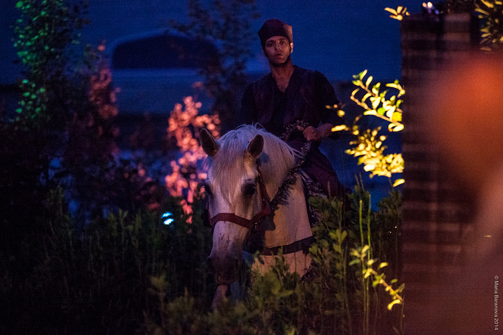 prince on horse.jpg