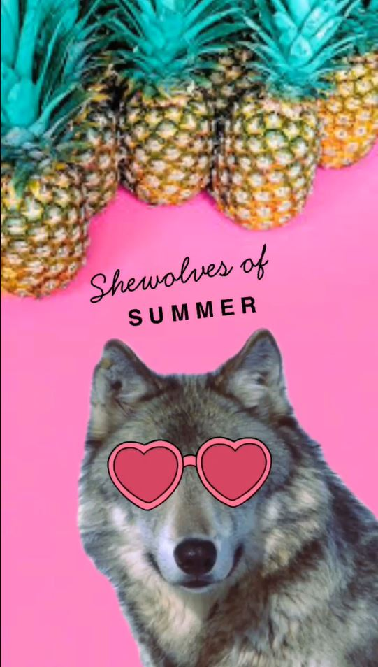 shewolves of summer wolf pic.JPG