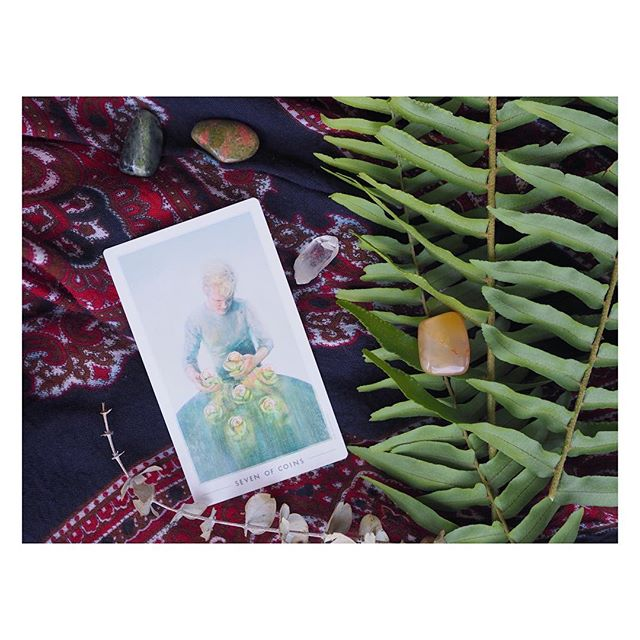 "🌱SEVEN OF COINS🌱  Happy #TarotTuesday!  This is such a great card for a holiday week. When this card comes up it's often an indication that you should take time to admire your handiwork & enjoy the fruits of your labor. 🍋 You can see in the artwork, a man happily tends to his abundant garden. 🥕  In numerology, sevens are a magically charged number of introspection, reflection, and intuition. In the tarot, pentacles or coins are about our outer world (home, the body, your environment), growth, physical representations of abundance, and of course – cash money. 💰  So this card can often represent profit, reward, or investment in a reading (maybe not necessarily financial - might be time, energy, or a relationship). The Seven of Coins can be a nudge to invest in your future or to remind you that ""quick fixes"" aren't the way to get to this kind of abundance. 🔑  The patience of a gardener – seeing something through from seedling to blooming magnificence is not only worthwhile, it's incredibly rewarding and bolsters your personal growth along the way.💐 . This suit can correspond to the element of Earth and the zodiac earth signs of Taurus, Virgo, Capricorn (this card might more clearly point to you or someone you know if you have that knowledge). For me, this card has represented nurturing dreams, being patient, and taking time to enjoy nature. 🌳  It delivers a gentle message and definitely a minor arcana card that brings a smile to any reading. 🙂"