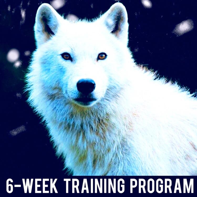 shewolves+of+winter+training.jpg