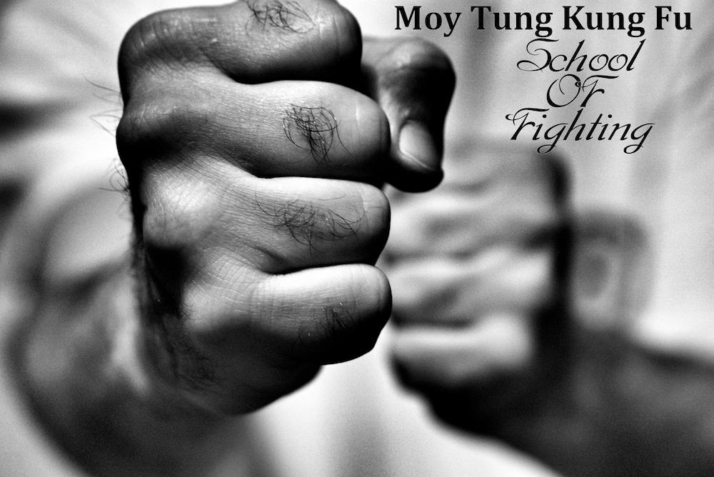 Moy Tung Kung Fu School of Fighting