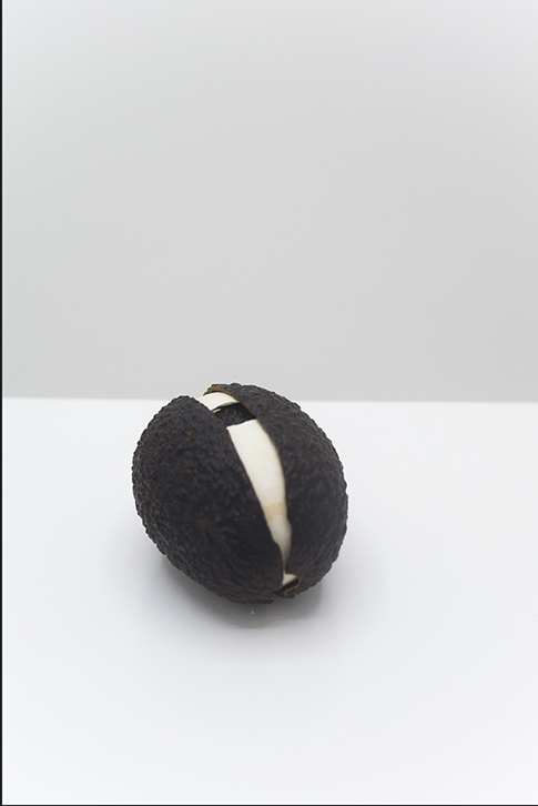 Martín Soto Climent, Huevocado (which came first el huevo or the avocado?), 2012, Avocado and eggshels, 8 x 6 x 6 cm