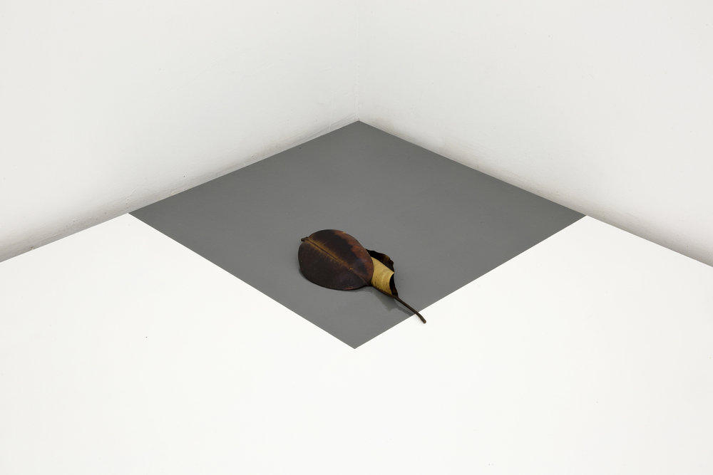 Leaf corner, 2017. Installation, corner piece with leaves (Unique), dimensions variable.