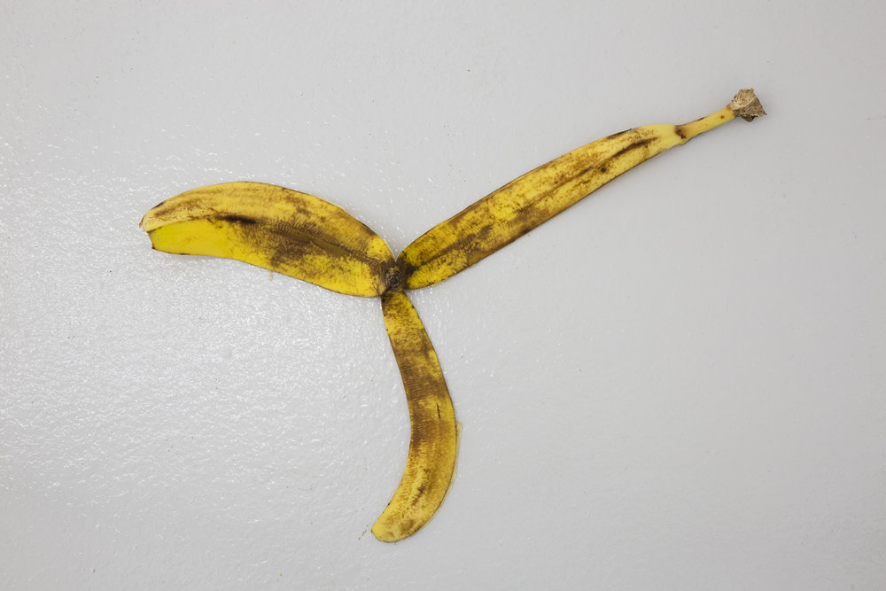 Adriana Lara, Installation (Banana Peel), 2008. Banana peel, dimensions variable.