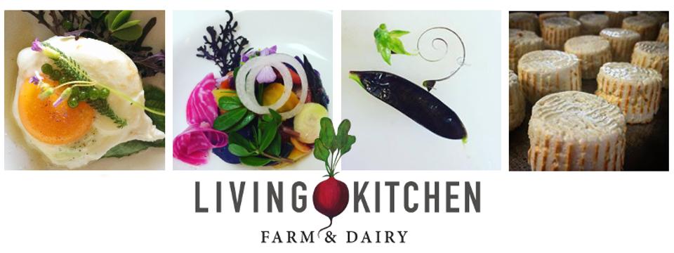 Living Kitchen Dinner for 16!