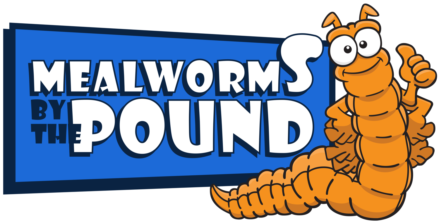 Mealworms by the Pound | Dried Mealworms
