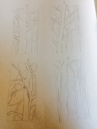 Sketches for a Sycamore Commission, Four Paintings Will Be Developed.