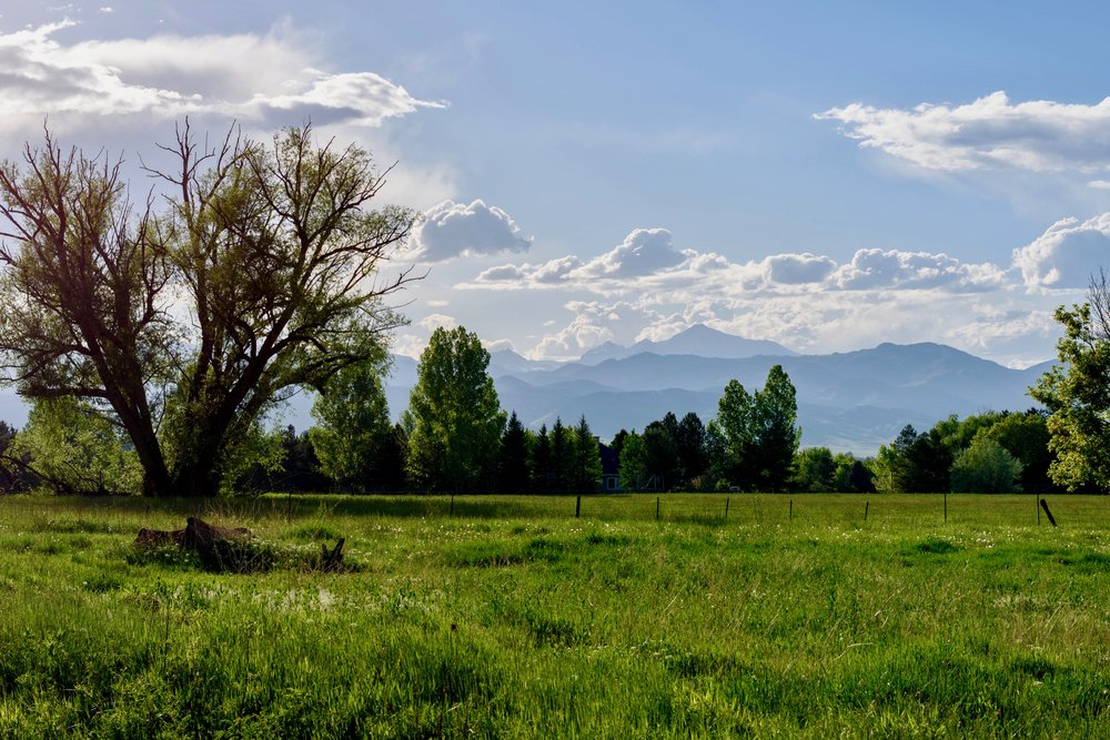 Longs Peak from Teller Farm