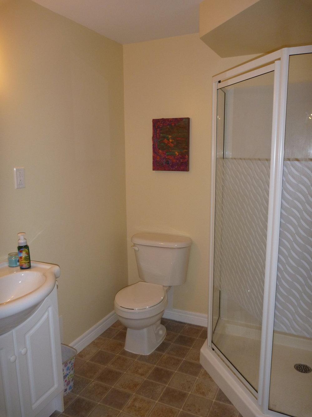 23. Downstairs Bathroom 1.JPG