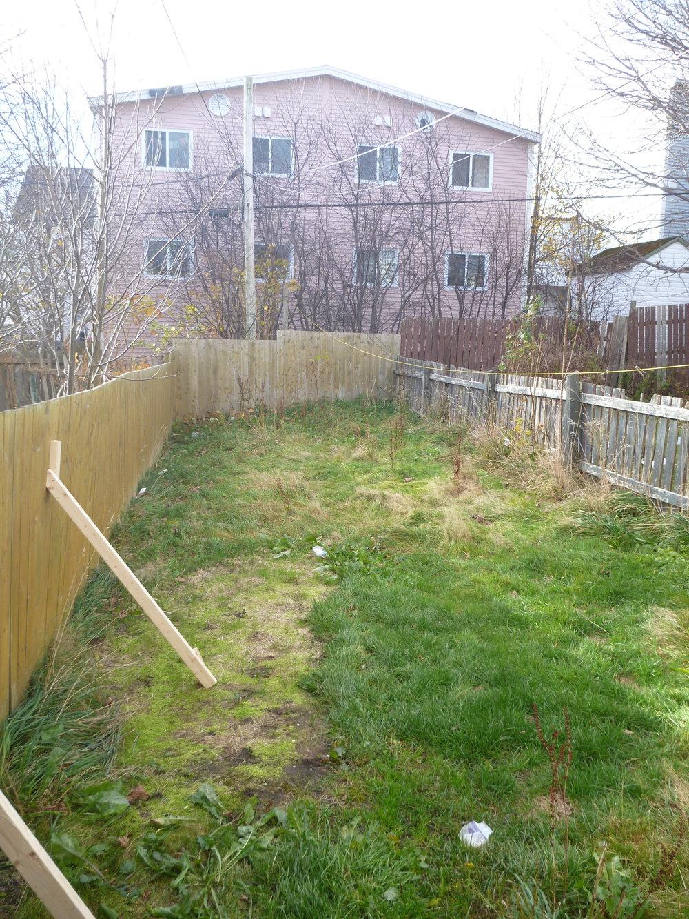 10. Backyard.jpg