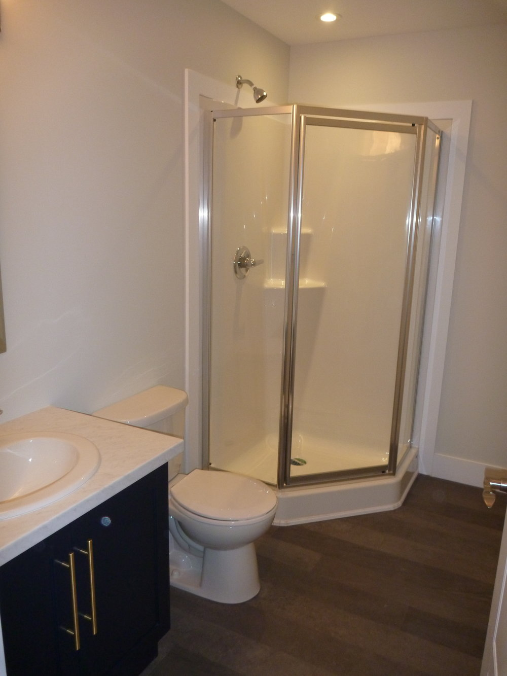 25. Bathroom - Downstairs.jpg