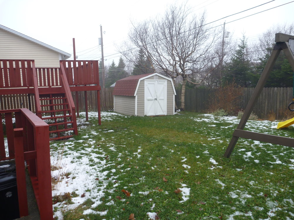 47. Back Yard 1.jpg