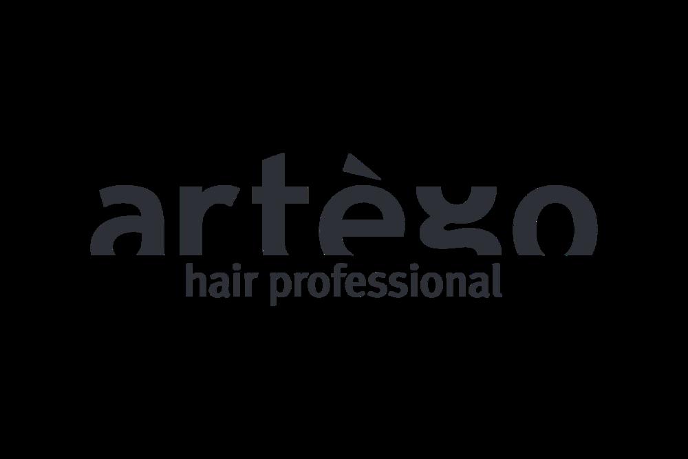 Logo Artego.png