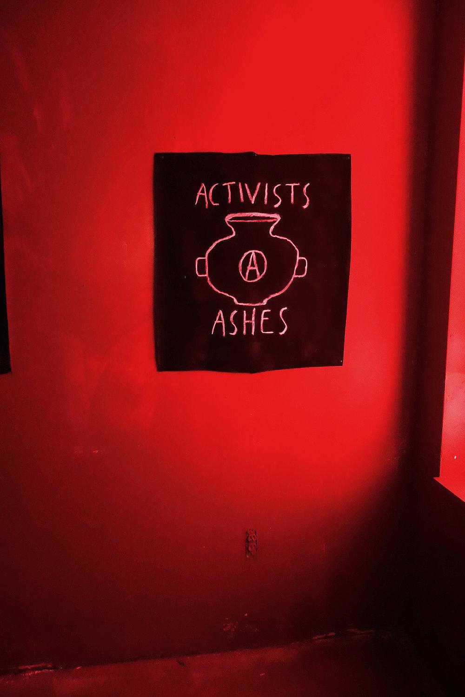 Activis Ashes Daytime.jpg