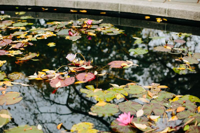 Central-Park-Conservatory-Garden-wedding-photos 17-1